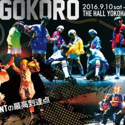 K_OG_02