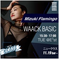 19.10_W_classhenko_MizukiFlamingo_アートボード 1 のコピー